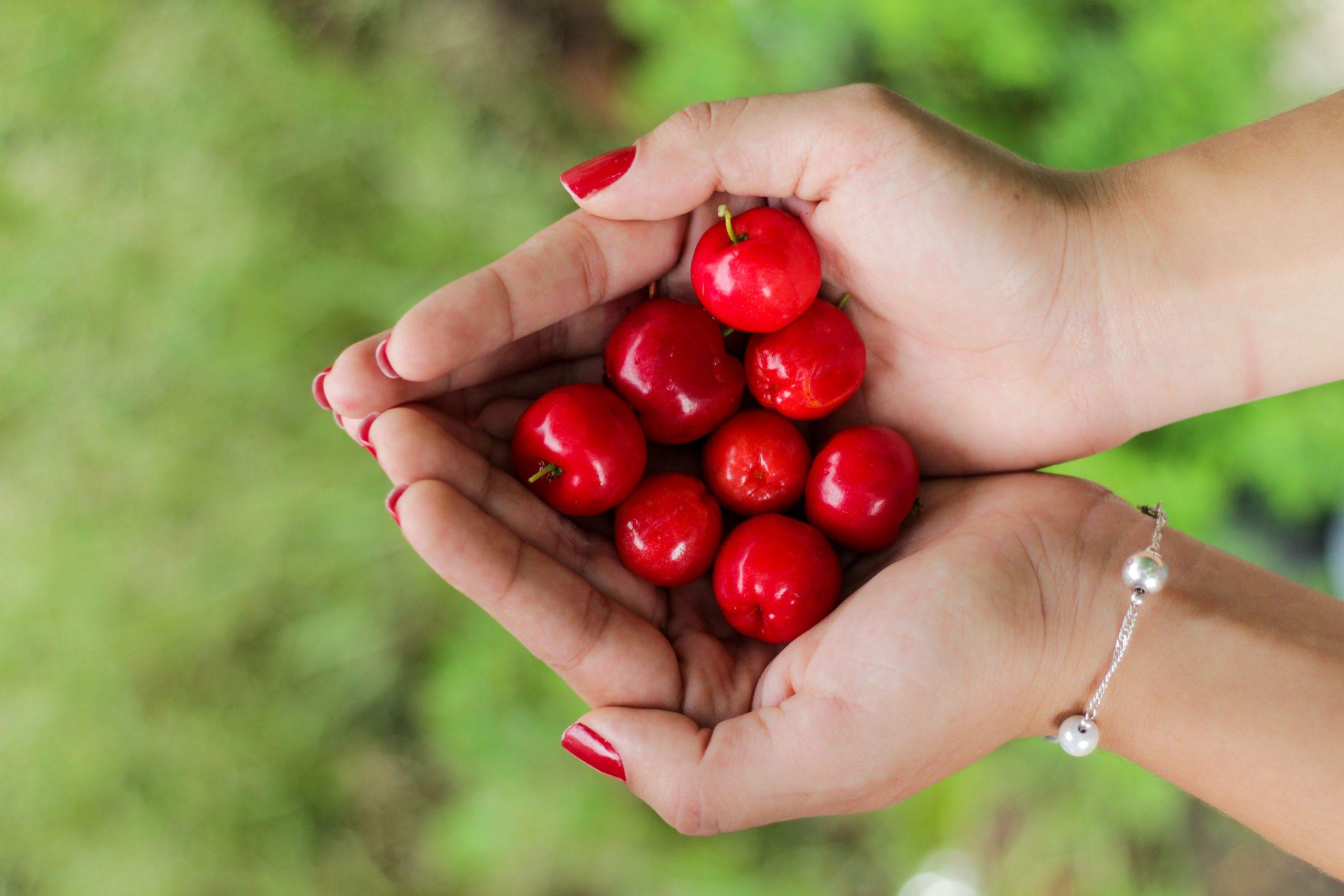 Acérola : Bienfaits et propriétés médicinales de cette plante
