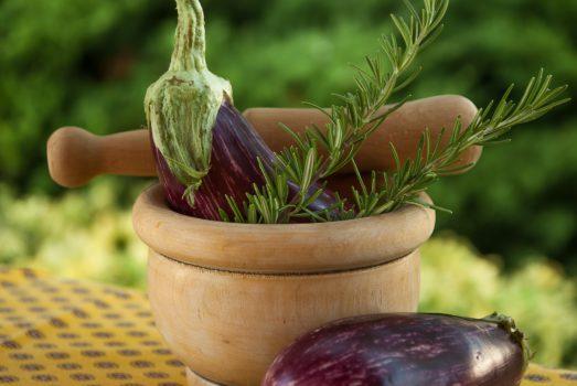 plante médicinale romarin cheveux